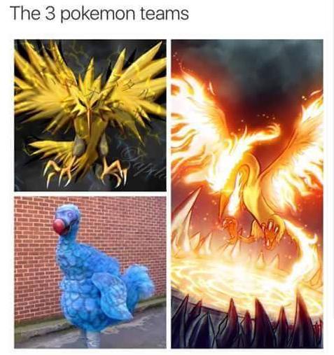 Pokemon Go Funny Photo 3