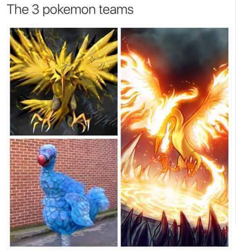 Pokemon Go Funny Photo 3